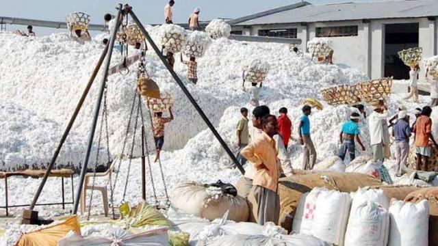 cotton procurement planning meeting