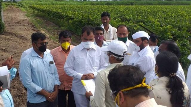 Immediate Punchnama of damaged crops : Bharne