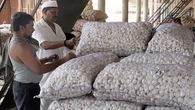 Improvement in garlic, guar rates in the Nagar