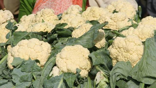 Flower Rs. 600 to 1000 per quintal in Parbhani
