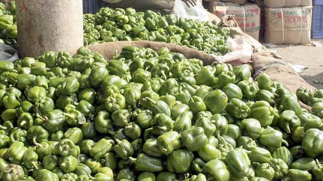 Chilli pepper 1875 to 2810 rupees per quintal in Nashik