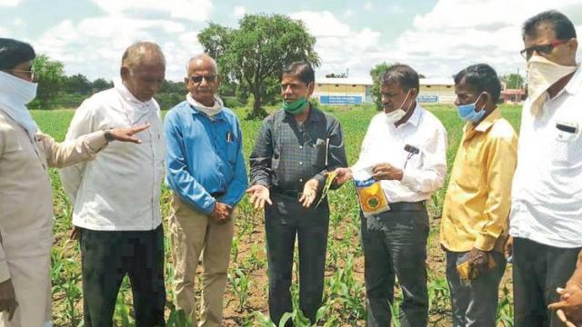 Taluka wise team for Agriculture Revitalization Week: Dr. Pawar