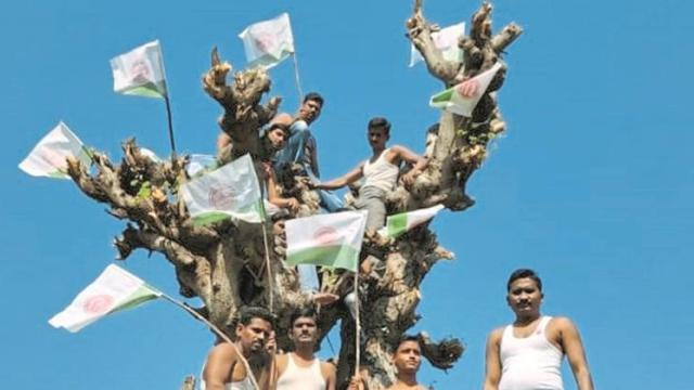Of 'Swabhimani' at Bodkha Self-torture movement on the tree