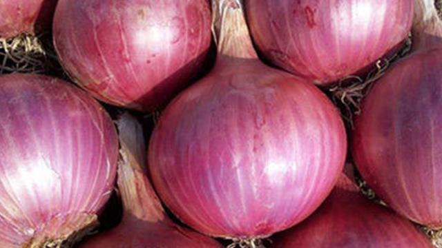 onion seed will be sell online