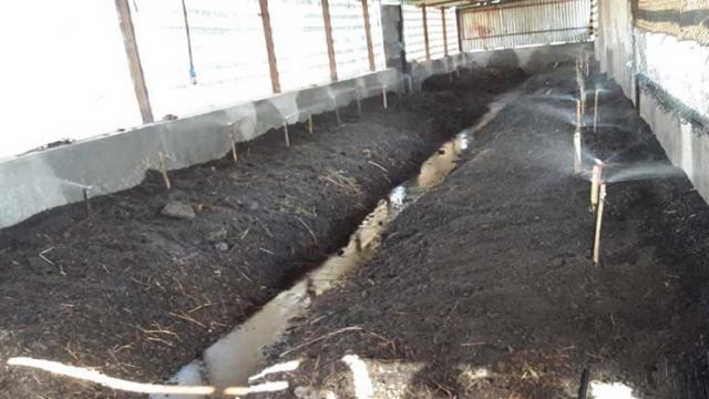 commercial vermicompost project report