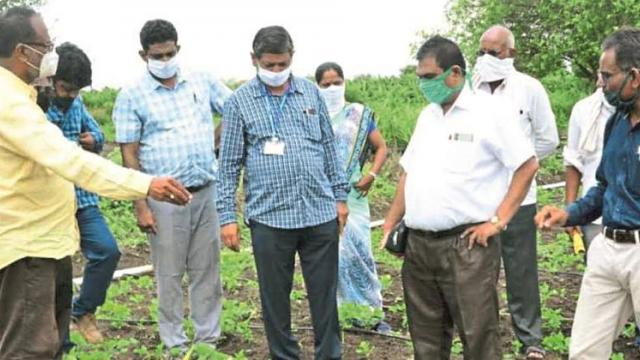 Use chemical weed controls only when absolutely necessary: Dr. Devasarkar