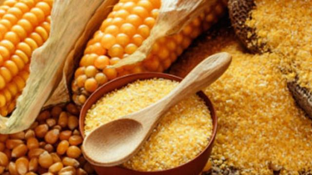 The importance of maize in the processing industry
