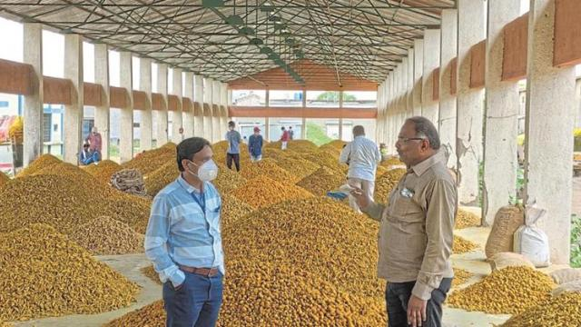 Two days purchase of turmeric at Risod Market Committee