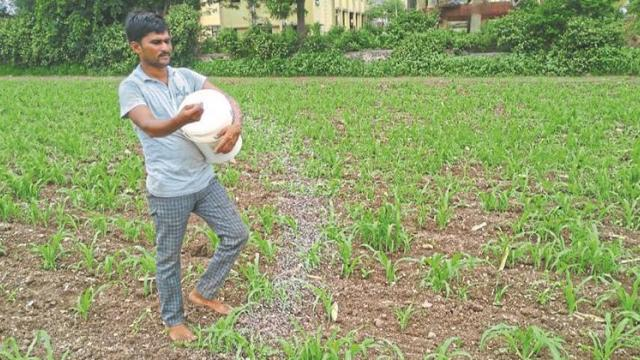 Farmers rush in Nashik district, urea not available