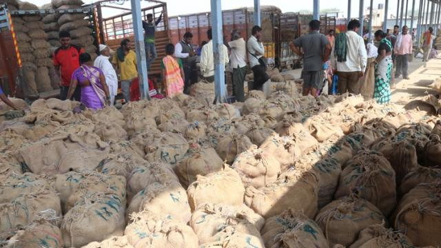 potato market of pune agriculture produce market committee