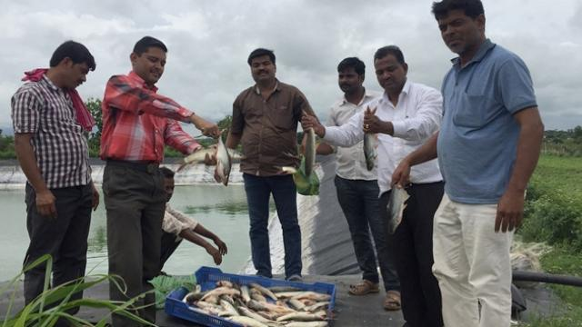 fish farming training