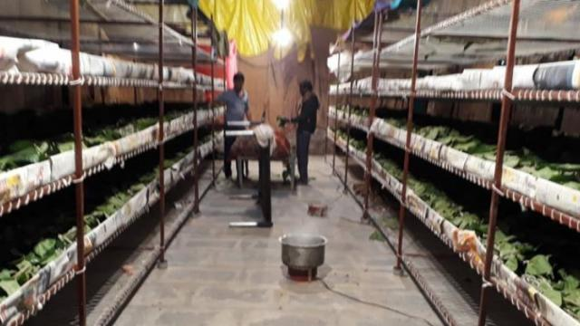 sericulture unit management