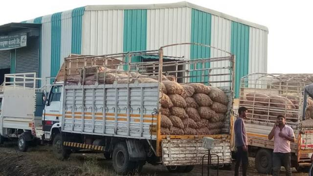 Onions are sent in other states for sale by a farmer company.