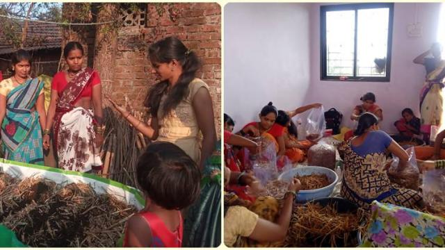 Training of women on mushroom production and nutrition garden creation through groups.