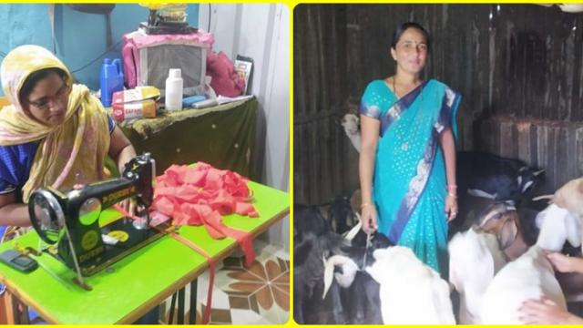 Employment generation through goat rearing and sewing