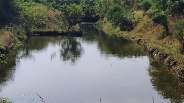 Due to the work of Pani Foundation, the picture of water stored in the village stream remained.