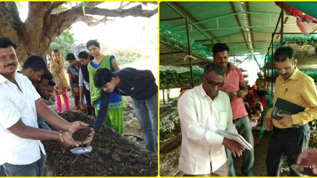 Silk industry and vermicomposting project implemented in the village