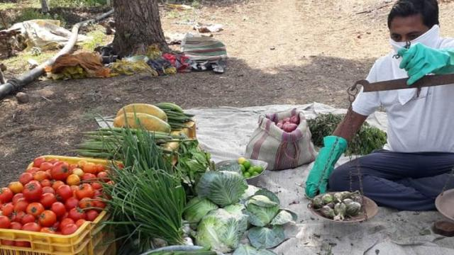 vegetable selling directly from farm