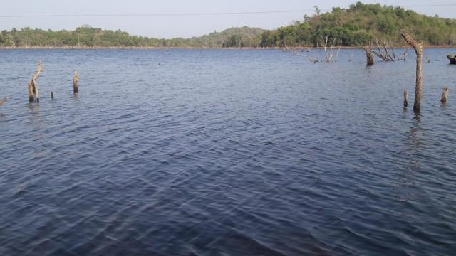 water of Korle-Satandi dam.