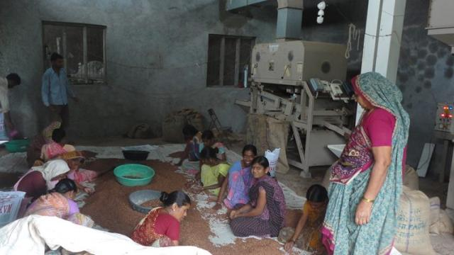 Cleaning, Grading Unit of Krishi Vigyan Mandal