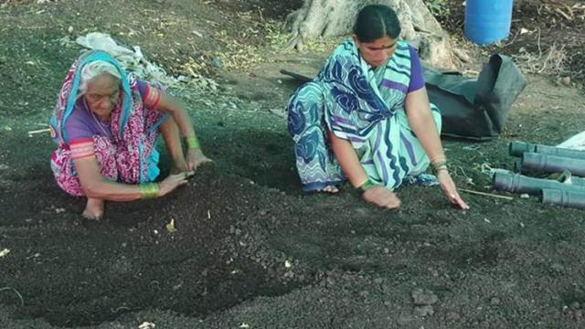 Production of vermicompost at a low cost