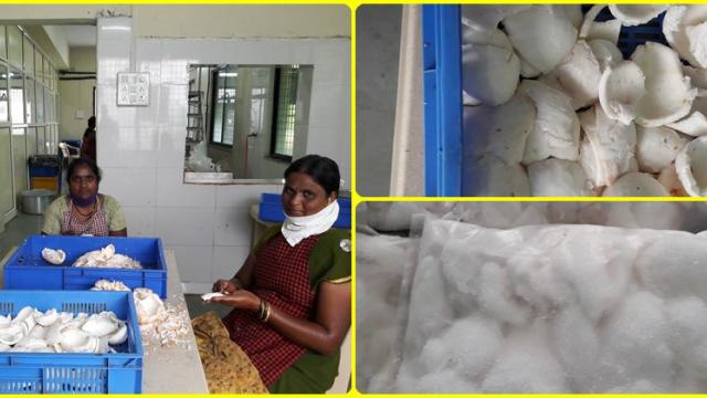 frozen tender coconut water in packets with home delivery