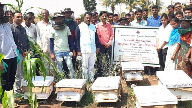 Awareness training programs on beekeeping in Nandurbar area