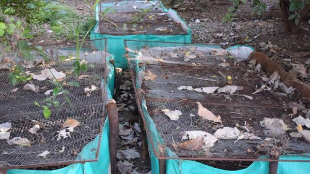 Vermicompost is used in agriculture.