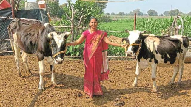 Meena Pandit, an agricultural assistant who runs the dairy business in the village.