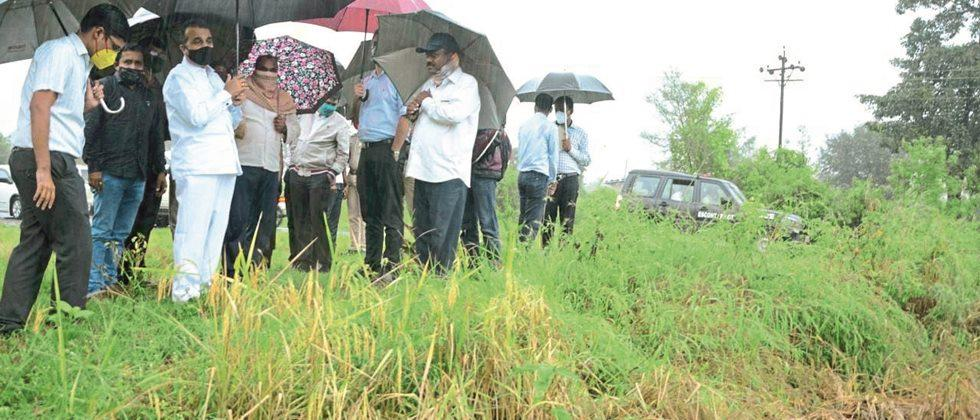 One and a half thousand hectares of crops hit in Satara district