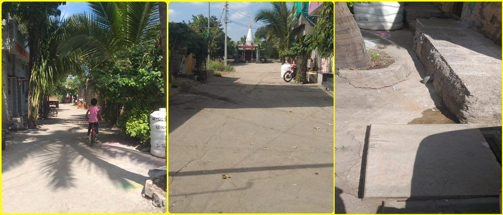 Tree planting on both sides of the road, cement concrete Road in the village and underground sewerage system