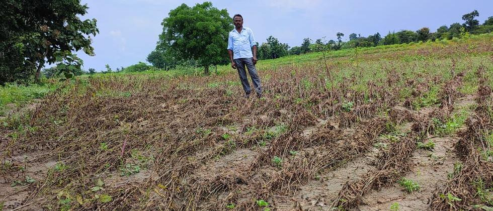 Crop insurance complaints reached over two lakh