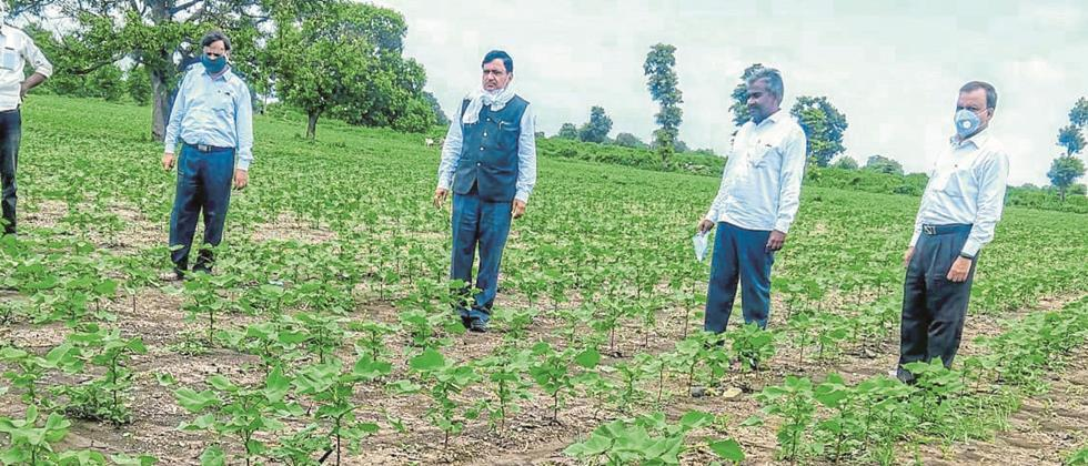 Changes in cropping pattern more beneficial: Vice Chancellor Dr. Spears