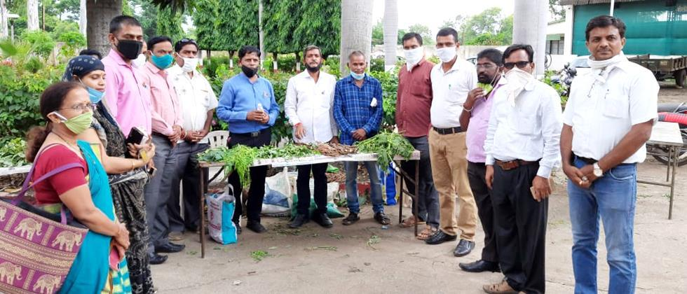 Spontaneous response of consumers to the purchase of legumes in Aurangabad