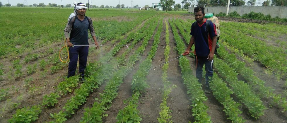 Identify the needs in agriculture: Dr. Singh
