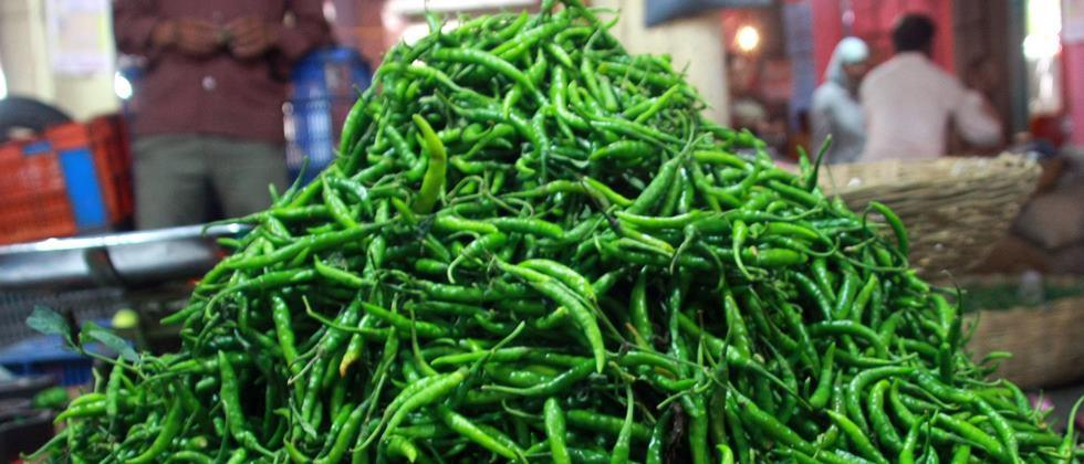 Demand for green chillies is normal in Nashik; Rate fixed