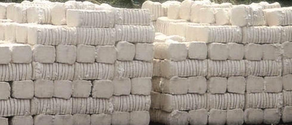 Exports of 35 lakh bales of cotton from the country will increase