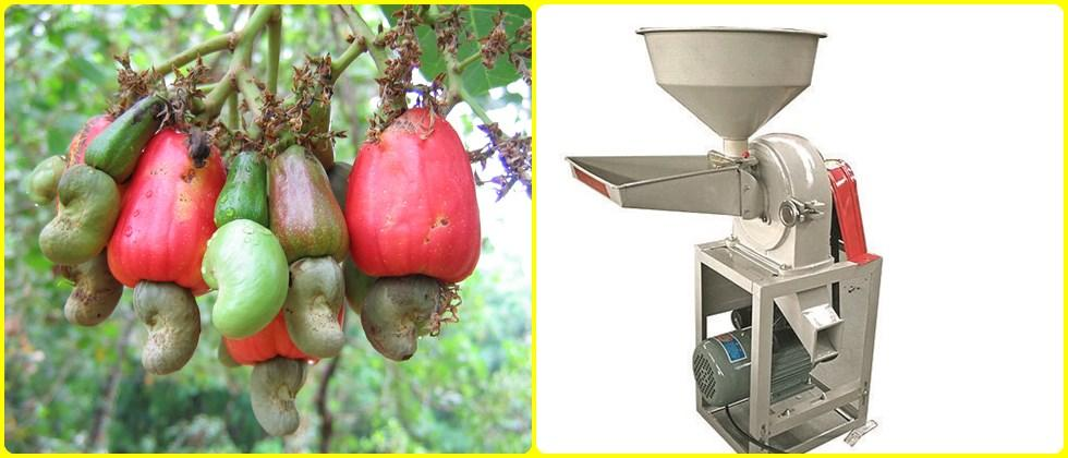 cashew nutshell processing machines