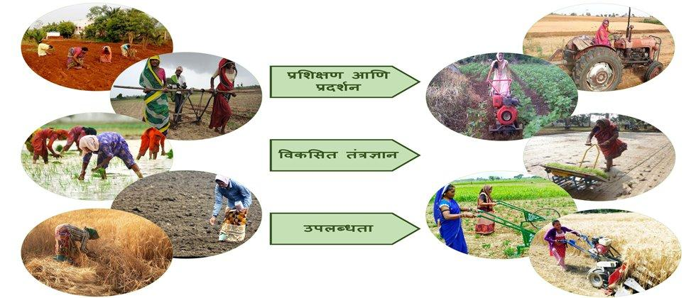 Design of farm machinary should be in accordance to woman