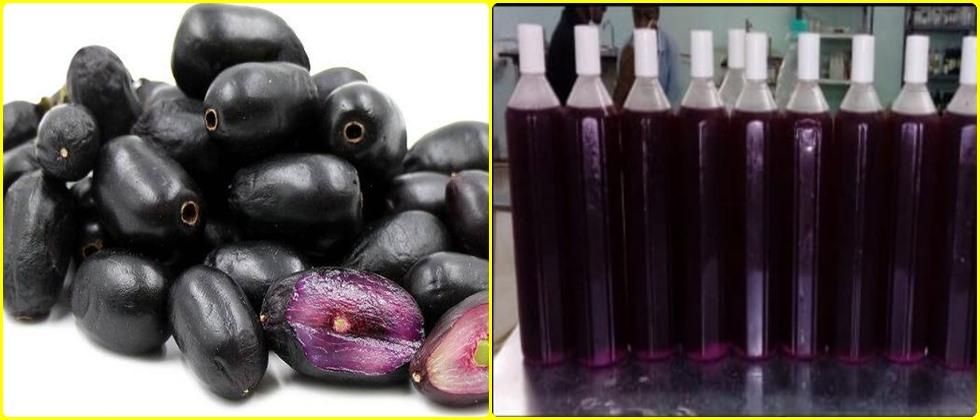 preparation of squash and juice from jamun