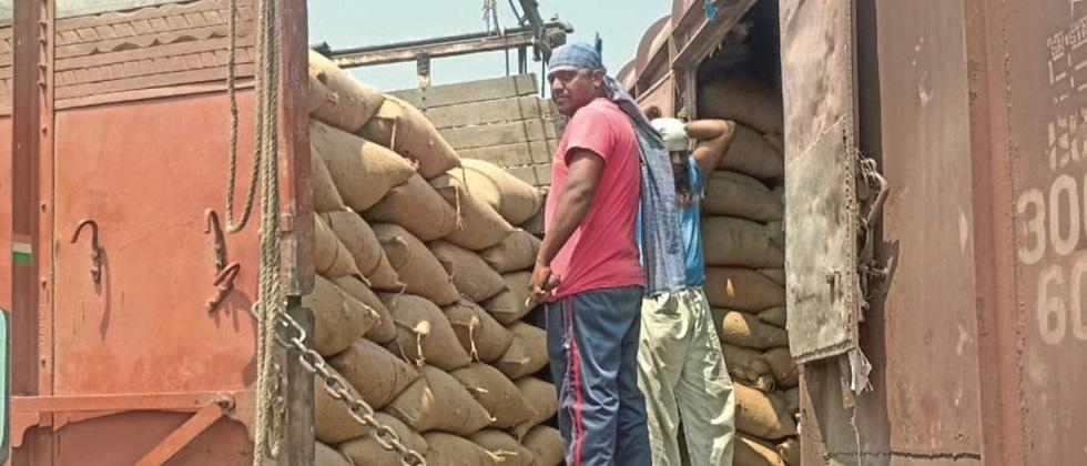 2 thousand 661 tons by rail Soybeans sent to Gujarat