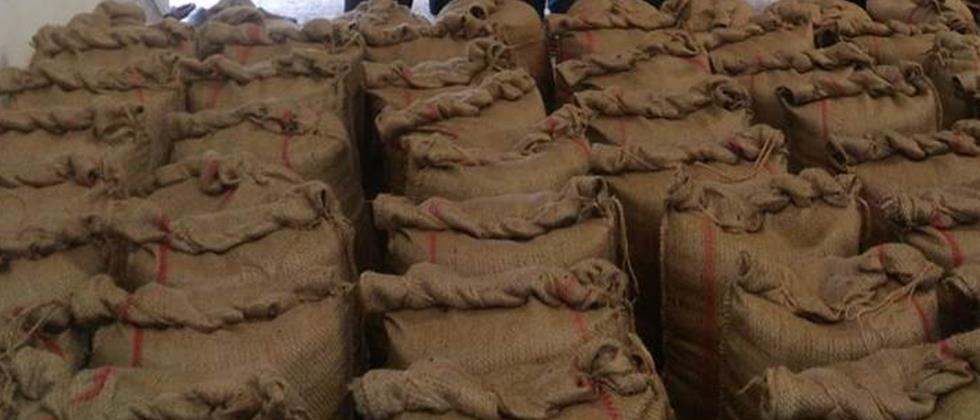 Stocks of grain over 17.5 thousand metric tons in the Pune region