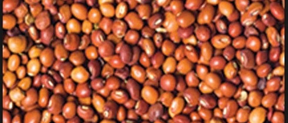 762 tur producers in Jalna wait for payment