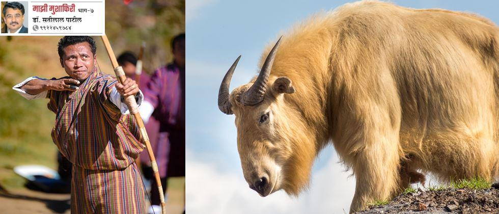 Bhutan;s National Sports is Archery and national animal is Takin goat