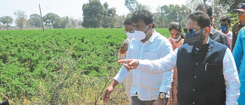 Punchnama of hail victims: Energy Minister Raut
