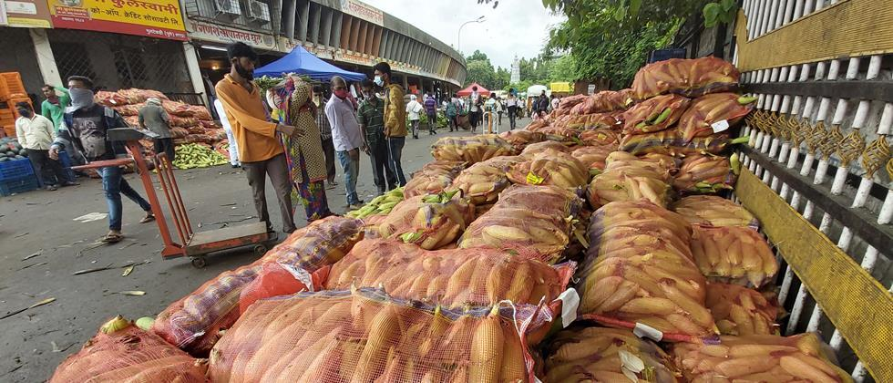 Pune saw an increase in vegetable arrivals; Rate fixed