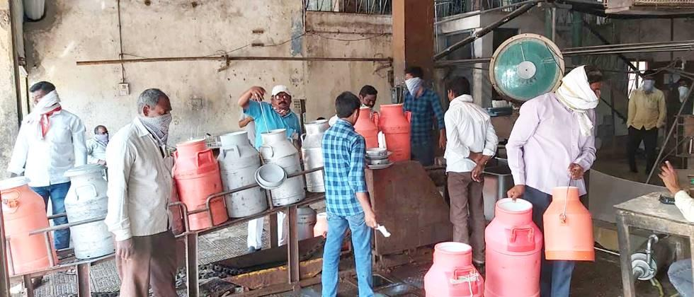 Increase in milk collection in Parbhani Government Dairy