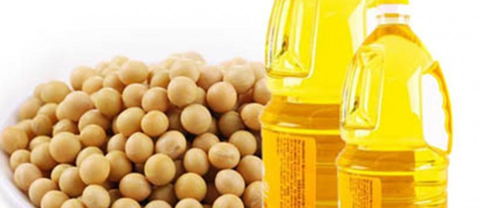 Big drop in soybean prices instead of edible oil prices