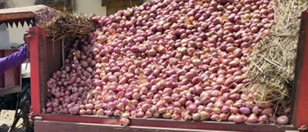 onion auction remain close