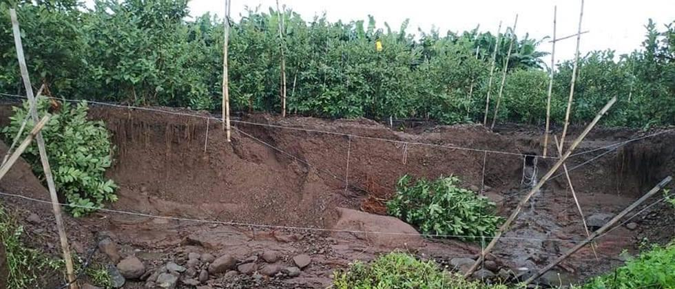 In farm game in Solapur district due to heavy rains